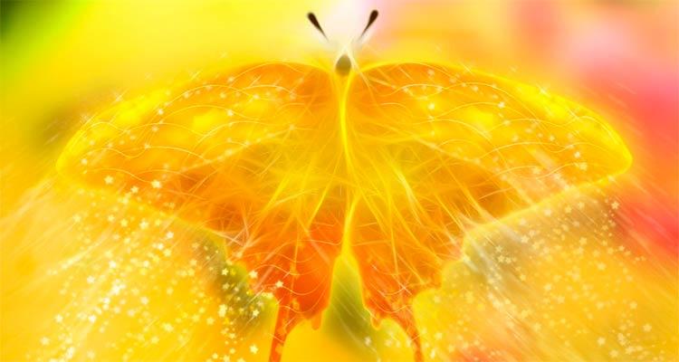 Красивая картинка с крыльями